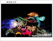 Day2 part2 晚上迪士尼遊行:DSC_9383.JPG
