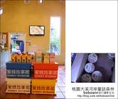 2012.08.26 桃園大溪河岸童話森林:DSC_0305.JPG