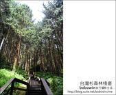 2011.05.14台灣杉森林棧道 文史館 天主堂:DSC_8331.JPG