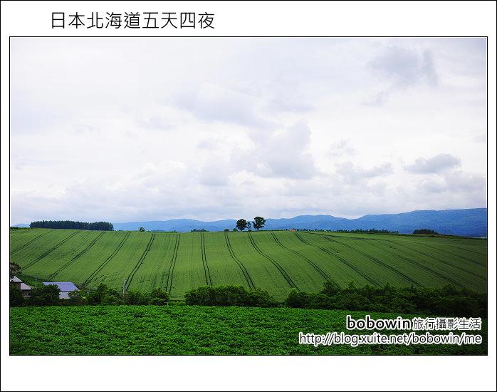 [ 日本北海道之旅 ] Day2 part3  美瑛之丘、拼布之丘:DSC_8273.JPG