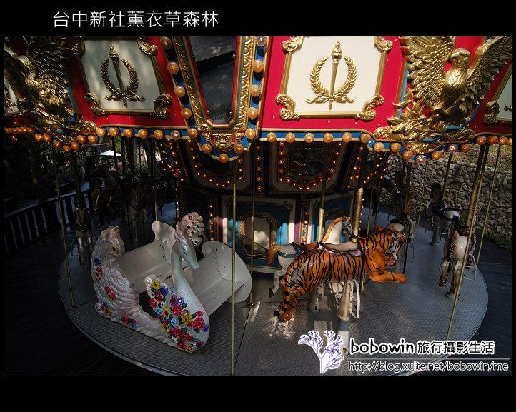 [ 台中 ] 新社薰衣草森林--薰衣草節:DSCF6652.JPG