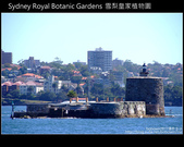 [ 澳洲 ] 雪梨皇家植物園 Sydney Royal Botanic Gardens:DSCF5154.JPG