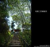 桃園復興鄉三民蝙蝠洞:DSC_7012.JPG