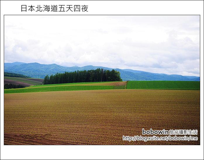 [ 日本北海道之旅 ] Day2 part3  美瑛之丘、拼布之丘:DSC_8277.JPG