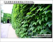 Day3 Part4 長春藤廣場&大原美術館:DSC_8272.JPG