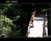 桃園復興鄉三民蝙蝠洞:DSCF4891.JPG