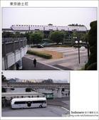 日本東京之旅 Day2 part1 東京迪士尼:DSC_8403.JPG