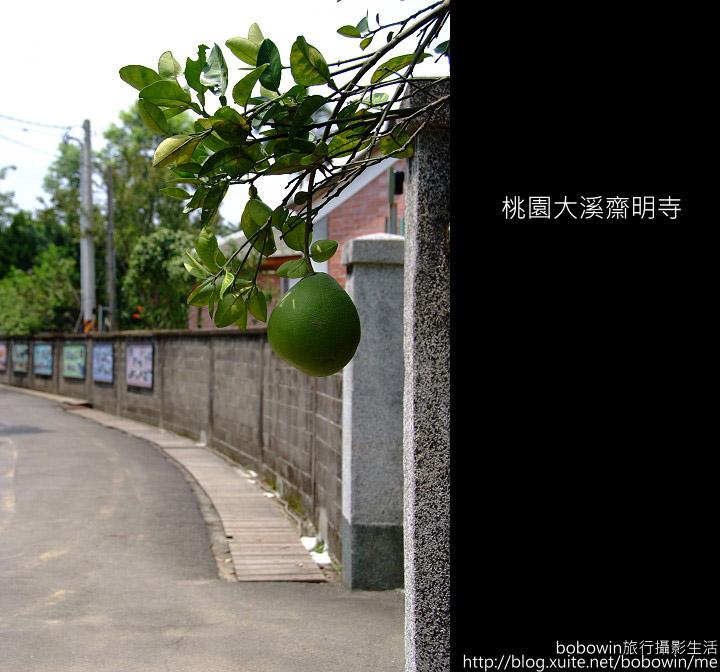 2009.08.16 大溪齋明寺:DSCF6754.JPG