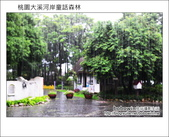 2012.08.26 桃園大溪河岸童話森林:DSC_0321.JPG