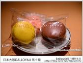 日本心齋橋DALLOYAU 馬卡龍:DSC_6979.JPG