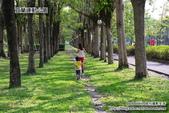 2014.08.09 宜蘭運動公園:DSC_4767.JPG