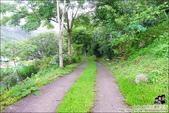 新竹尖石油羅溪森林:DSC08079.JPG