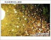 2012.04.22 新店碧潭和美山賞螢:DSC_1050.JPG