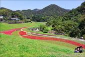 台北內湖大溝溪公園:DSC_2145.JPG