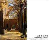[ 日本東京自由行 ] Day4 part3 東京大學:DSC_0503.JPG