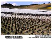 2014.01.11 基隆超大風車版圓仔-擁恆文創園區:DSC_8721.JPG