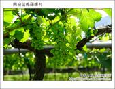 2011.08.14 南投信義羅娜村:DSC_0844.JPG