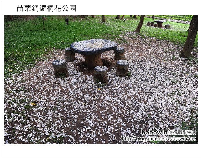 2012.04.29 苗栗桐花公園花況:DSC_1781.JPG