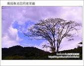 2013.02.13 南投魚池日月老茶廠:DSC_2013.JPG