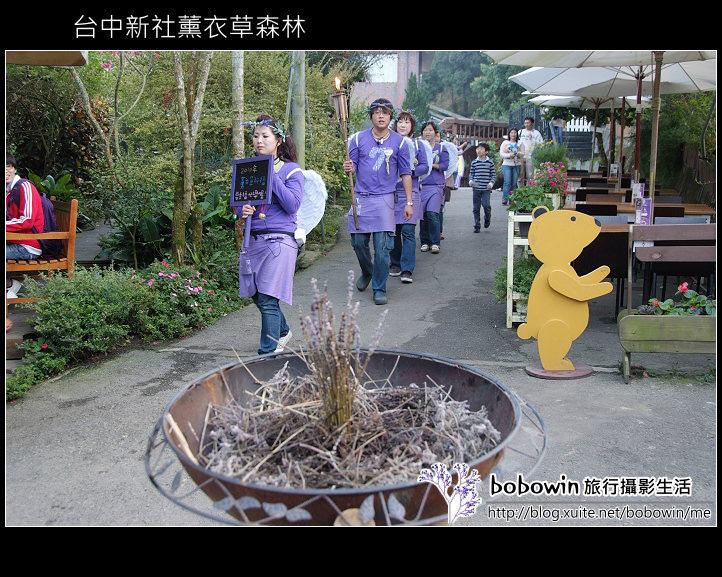 [ 台中 ] 新社薰衣草森林--薰衣草節:DSCF6749.JPG