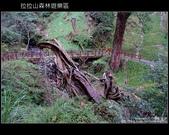 [ 北橫 ] 桃園復興鄉拉拉山森林遊樂區:DSCF7902.JPG