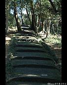 20080207_基隆紅淡山:DSC_7361.JPG