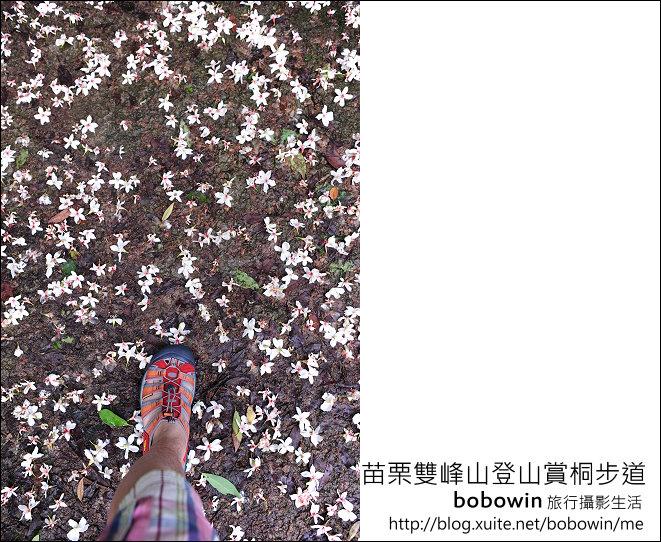 2012.04.29 苗栗雙峰山登山步道:DSC_1857.JPG