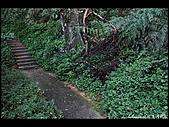 20080207_基隆紅淡山:DSC_7364.JPG