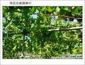 2011.08.14 南投信義羅娜村:DSC_0848.JPG