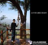 [ 台中 ] 新社薰衣草森林--薰衣草節:DSCF6609.JPG