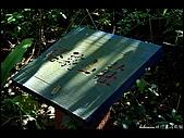 20080207_基隆紅淡山:DSC_7375.JPG