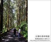 2011.05.14台灣杉森林棧道 文史館 天主堂:DSC_8344.JPG