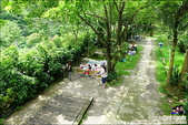 新竹尖石油羅溪森林:DSC07718.JPG