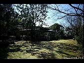 20080207_基隆紅淡山:DSC_7379.JPG