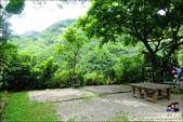 新竹尖石油羅溪森林:DSC07723.JPG