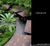 2009.07.04 三峽花岩山林:DSCF5731.JPG