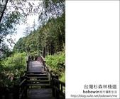 2011.05.14台灣杉森林棧道 文史館 天主堂:DSC_8352.JPG