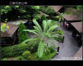 2009.07.04 三峽花岩山林:DSCF5732.JPG