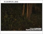 2012.04.22 新店碧潭和美山賞螢:DSC_1063.JPG