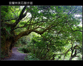 2009.06.13 林美石磐步道:DSCF5521.JPG