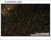 2012.04.22 新店碧潭和美山賞螢:DSC_1074.JPG