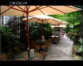 2009.07.04 三峽花岩山林:DSCF5733.JPG