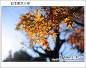 [ 日本東京自由行 ] Day4 part3 東京大學:DSC_0475.JPG