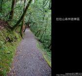 [ 北橫 ] 桃園復興鄉拉拉山森林遊樂區:DSCF7905.JPG