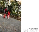 日本東京之旅 Day3 part5 東京原宿明治神宮:DSC_9953.JPG
