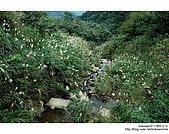 基隆姜子寮山&泰安瀑布:DSC_6273.JPG
