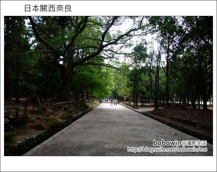 日本關西京都之旅Day5 part1 東福寺 奈良公園 春日大社:DSCF9557.JPG