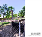 彰化克林姆莊園:DSC_4111.JPG