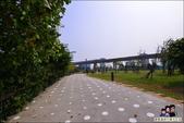 桃園青塘園生態公園:DSC_2490.JPG