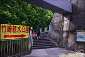 竹崎親水公園天空步道:DSC_9856.JPG